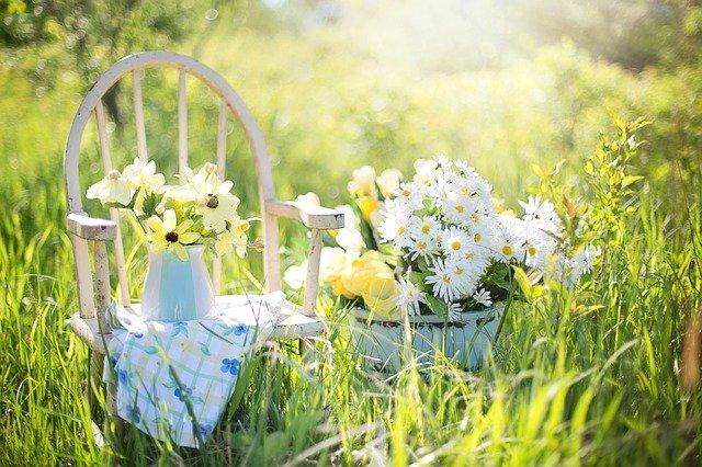 květiny na židli