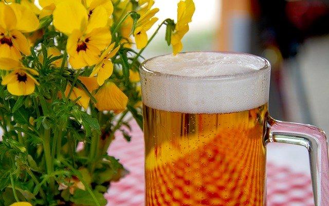 pivo na zahrádce